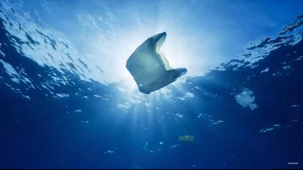 Does Plastic Get Into The Ocean? Let's Look At The Facts!